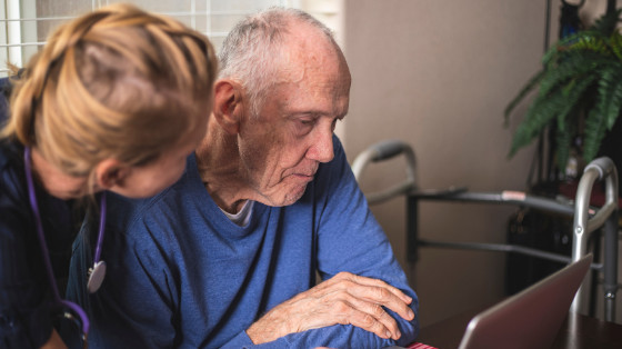 What is the Role of Hospice